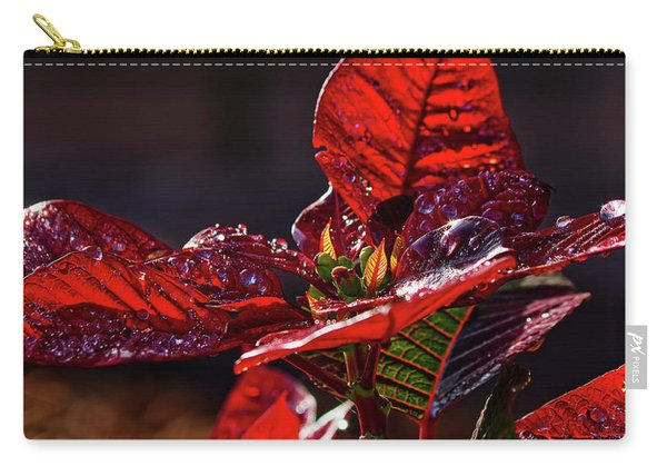Poinsettia II Carry-all Pouch