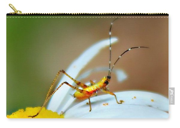 Carry-all Pouch featuring the photograph Pollen Tracks by Candice Trimble