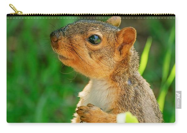 Pondering Squirrel Carry-all Pouch