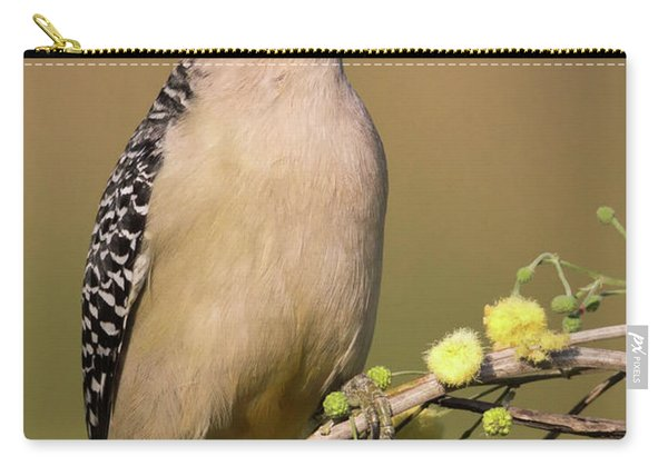 Portrait Of A Golden-fronted Woodpecker Carry-all Pouch