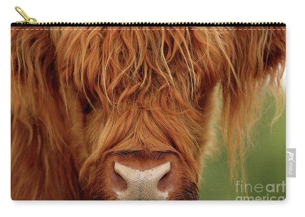 Portrait Of A Highland Cow Carry-all Pouch