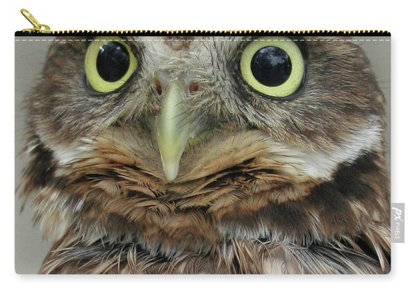 Portrait Of Burrowing Owl Carry-all Pouch