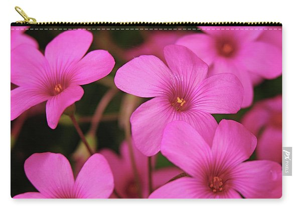 Pretty Pink Phlox Carry-all Pouch