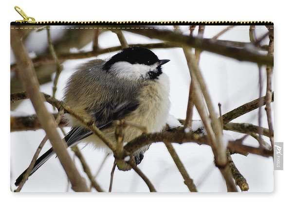 Puffed Up Carry-all Pouch