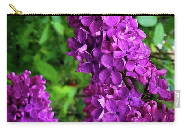 Purple Lilac Parade Carry-all Pouch