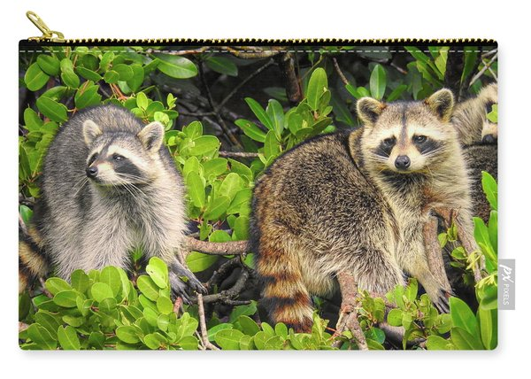 Raccoons In The Mangroves Carry-all Pouch