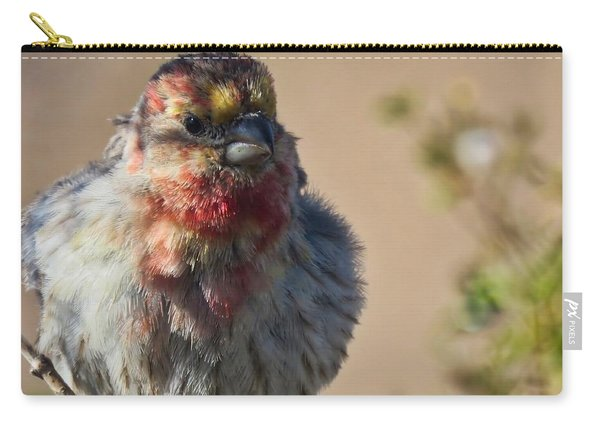 Rare Multicolored Male House Finch Carry-all Pouch