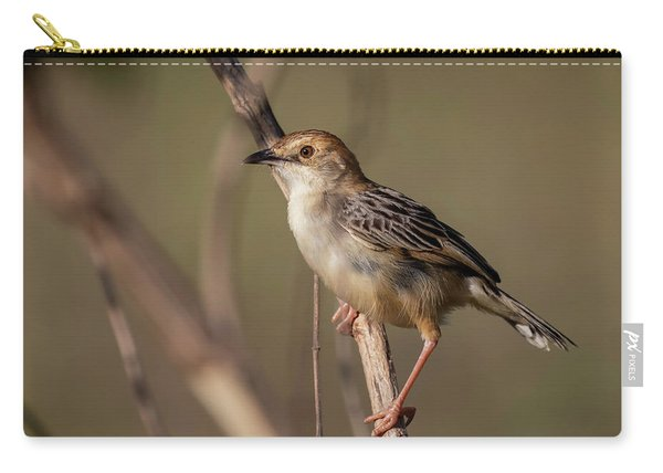 Rattling Cisticola Carry-all Pouch