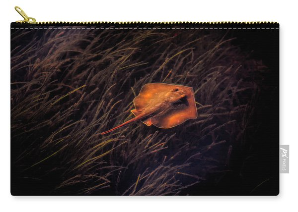 Ray In The Grass Flats Carry-all Pouch