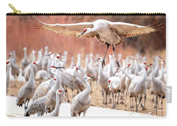 Ready Or Not, Here I Come -- Sandhill Cranes Carry-all Pouch