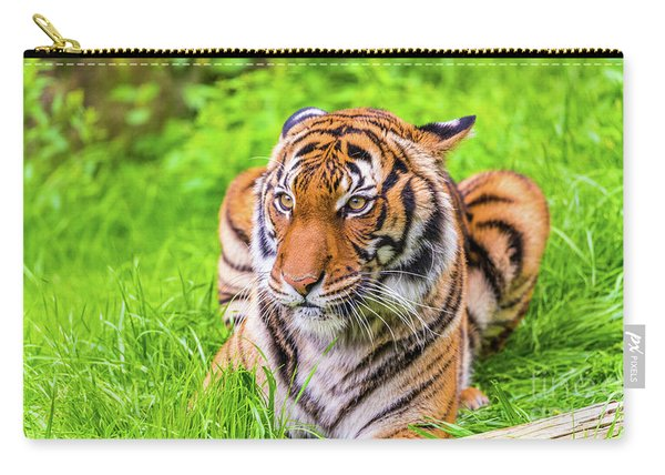 Carry-all Pouch featuring the photograph Ready To Pounce by Dheeraj Mutha