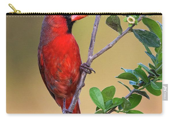 Red All Over Carry-all Pouch