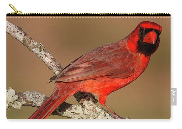 Red And Radiant Carry-all Pouch