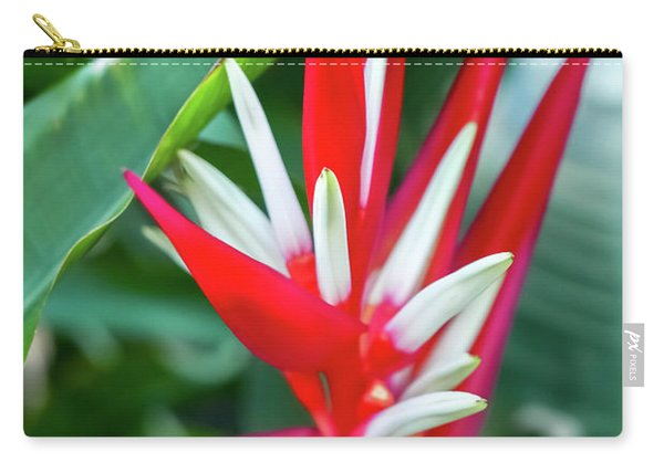 Red And White Birds Of Paradise Carry-all Pouch