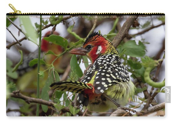 Red-and-yellow Barbet Carry-all Pouch