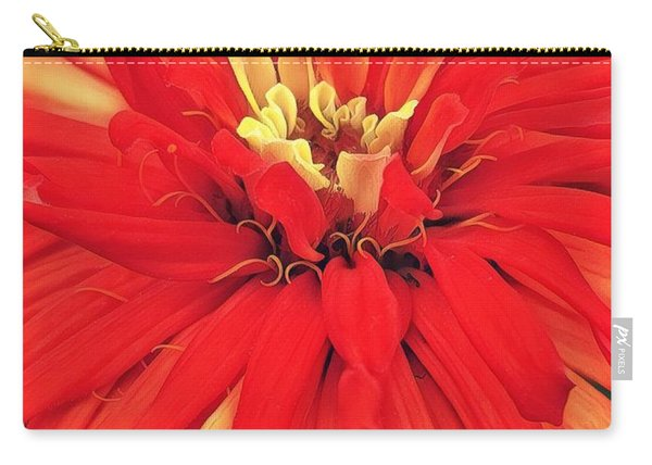 Red Bliss Carry-all Pouch