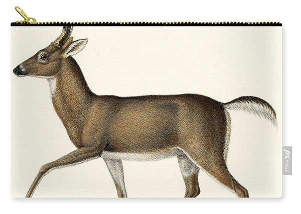 Red Deer, 1824 Colour Litho Carry-all Pouch