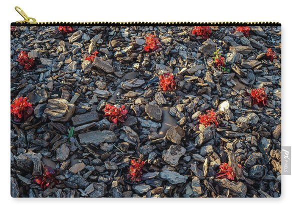 Red Flowers Over Stones Carry-all Pouch