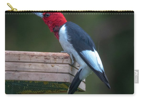Red-headed Woodpecker Perched Carry-all Pouch