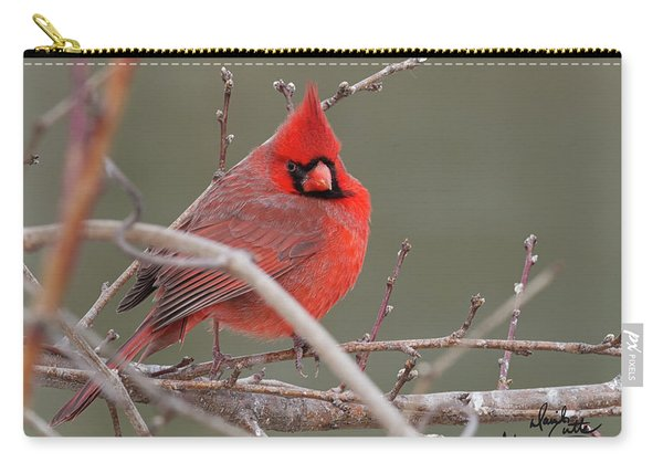 Red In Winter Carry-all Pouch