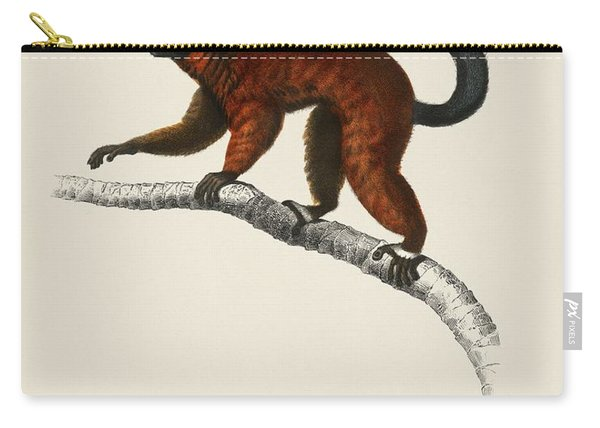 Red Ruffed Lemur  Varecia Rubra  Illustrated By Charles Dessalines D' Orbigny  1806-1876  Carry-all Pouch