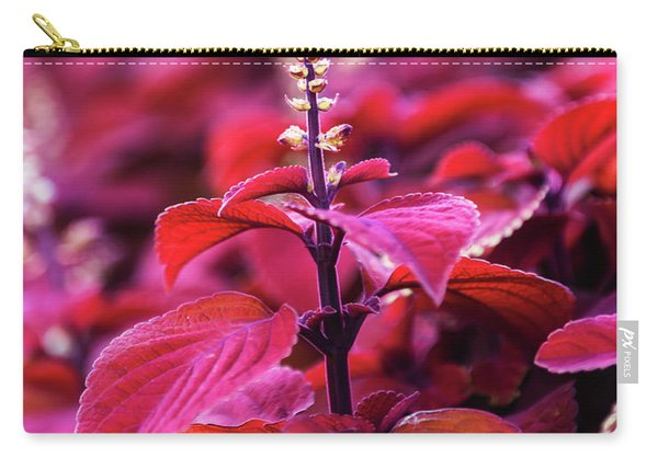 Carry-all Pouch featuring the photograph Reds by Dheeraj Mutha
