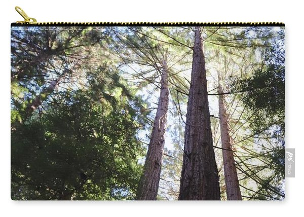 Redwoods, Blue Sky Carry-all Pouch