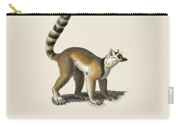 Ring-tailed Lemur  Lemur Catta  Illustrated By Charles Dessalines D' Orbigny  1806-1876  Carry-all Pouch