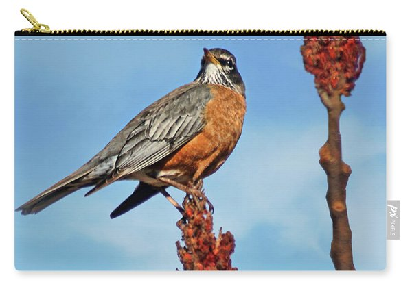 Robin In Springtime Carry-all Pouch