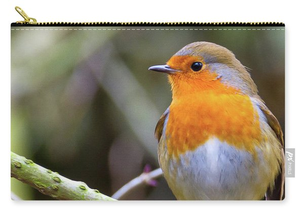 Robin. On Guard Carry-all Pouch