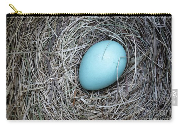 Robin's Egg Carry-all Pouch