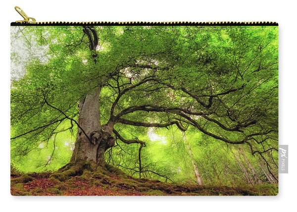 Roots Of Taymouth Estate - Scotland - Beech Tree Carry-all Pouch