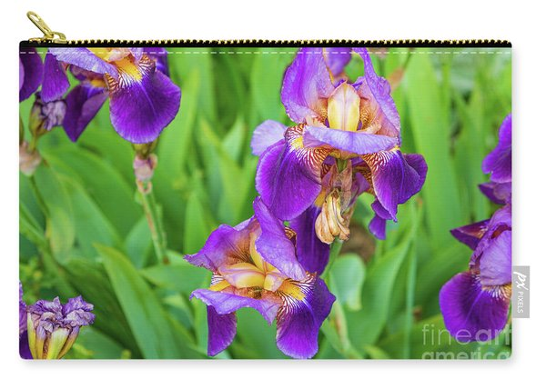 Royal Purple Irise Carry-all Pouch