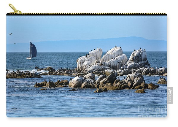 Sailboat At Bird Rock Carry-all Pouch