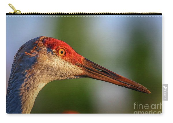 Carry-all Pouch featuring the photograph Sandhill Sunlight Portrait by Tom Claud