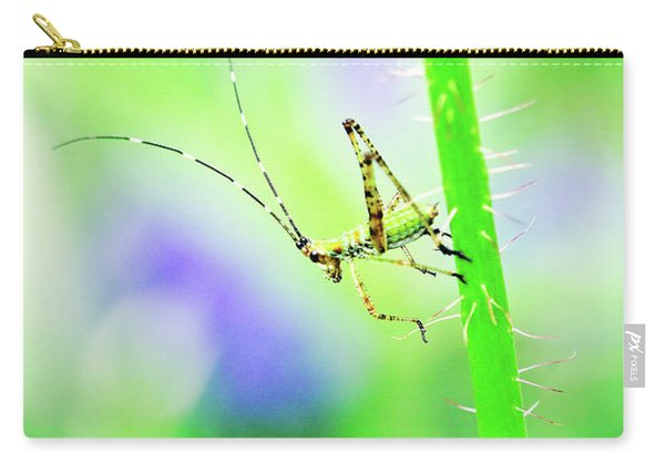 Carry-all Pouch featuring the photograph Say Hello To My Little Green Insect Friend by Don Northup