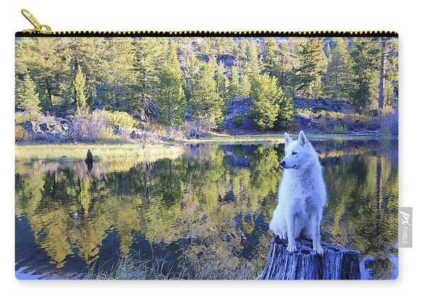Carry-all Pouch featuring the photograph Sekani Throne  by Sean Sarsfield