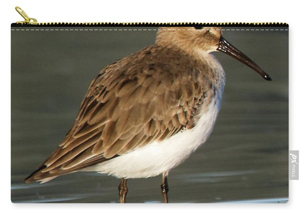 Shoreline Dunlin Carry-all Pouch