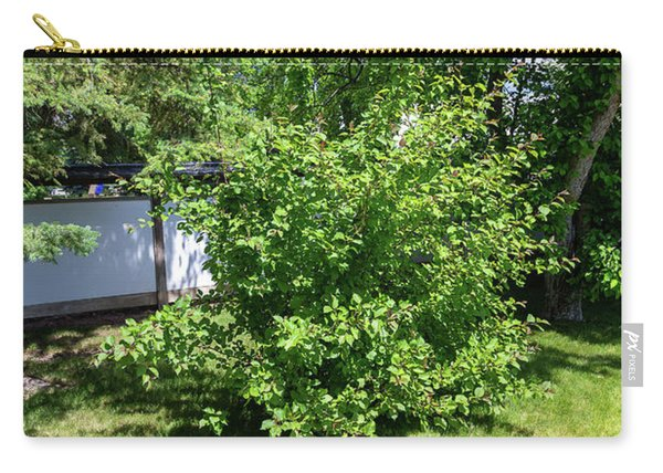 Shrub In The Garden Carry-all Pouch