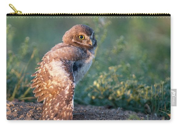 Shy Young Burrowing Owl Carry-all Pouch