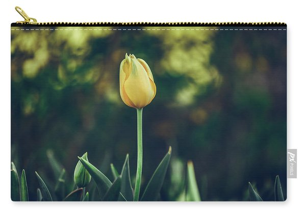 Carry-all Pouch featuring the photograph Silence Is Golden by Dheeraj Mutha