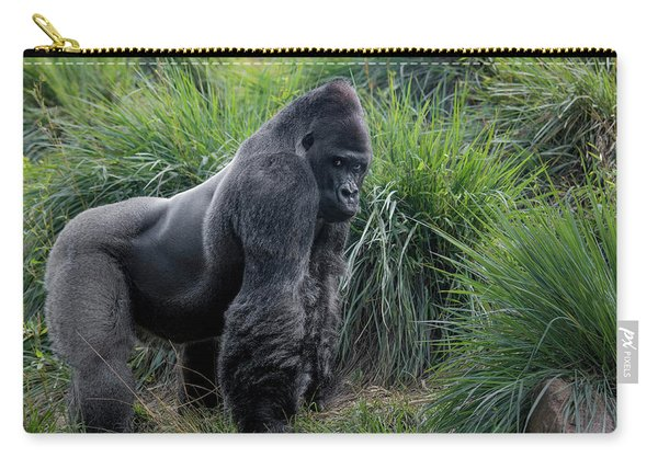 Silverback Stare 1806 Carry-all Pouch