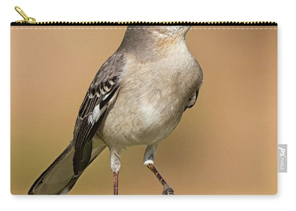 Singing Mockingbird Carry-all Pouch