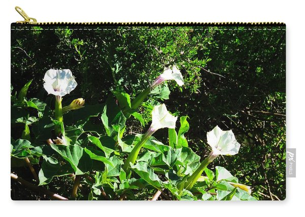 Sisters In The Sun Carry-all Pouch