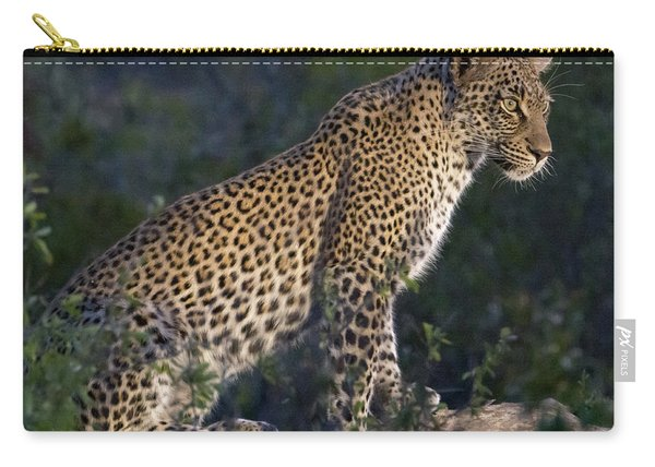 Sitting Leopard Carry-all Pouch