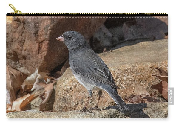 Slate-colored Junco Dsb0339 Carry-all Pouch