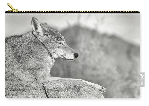Sleepy Coyote Carry-all Pouch