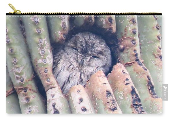 Sleepy Eye Carry-all Pouch