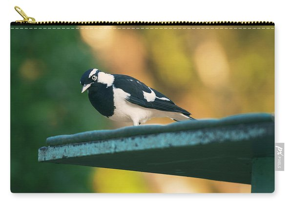 Small Magpie Lark Outside In The Afternoon Carry-all Pouch
