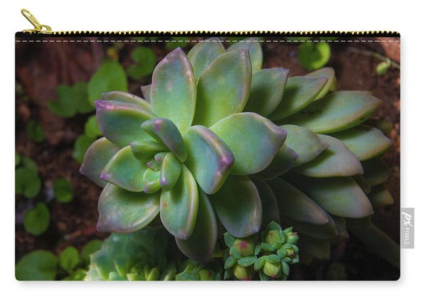 Small Succulents Carry-all Pouch